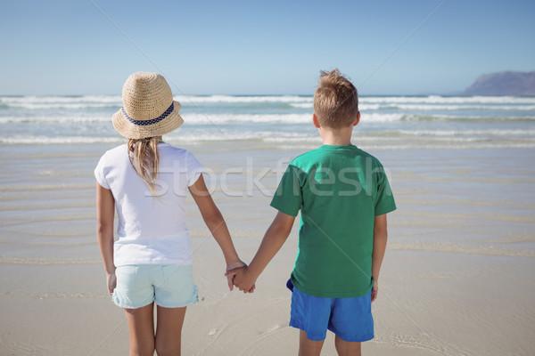 Widok z tyłu rodzeństwo trzymając się za ręce brzegu plaży Zdjęcia stock © wavebreak_media