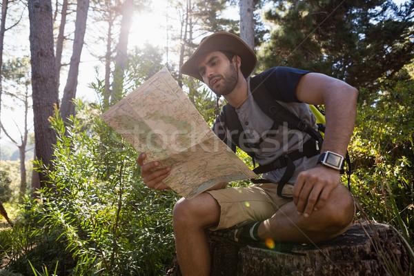 Uomo lettura mappa riposo albero foresta Foto d'archivio © wavebreak_media