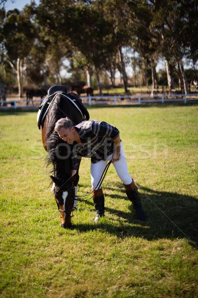 человека Постоянный лошади ранчо счастливым Сток-фото © wavebreak_media