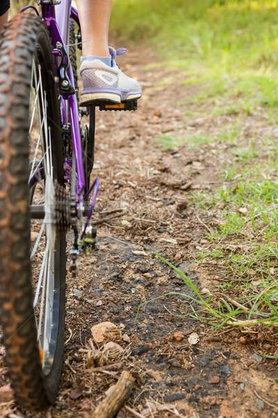 Vrouw mountainbike natuur weg Stockfoto © wavebreak_media