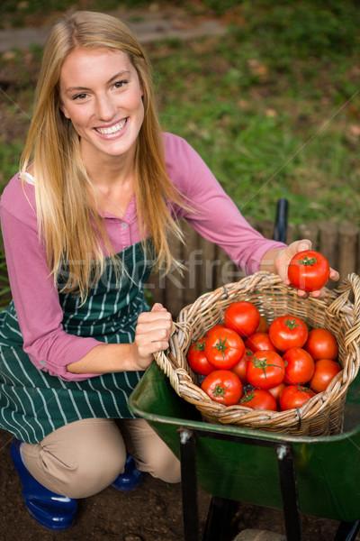 Portré boldog kertész néz friss paradicsomok Stock fotó © wavebreak_media