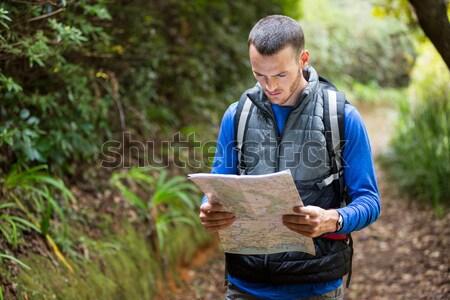 Feminino andarilho olhando mapa floresta árvore Foto stock © wavebreak_media