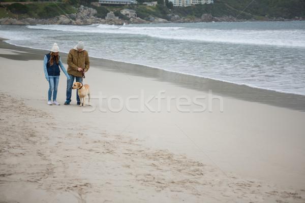 Paar lopen huisdier hond strand liefde Stockfoto © wavebreak_media