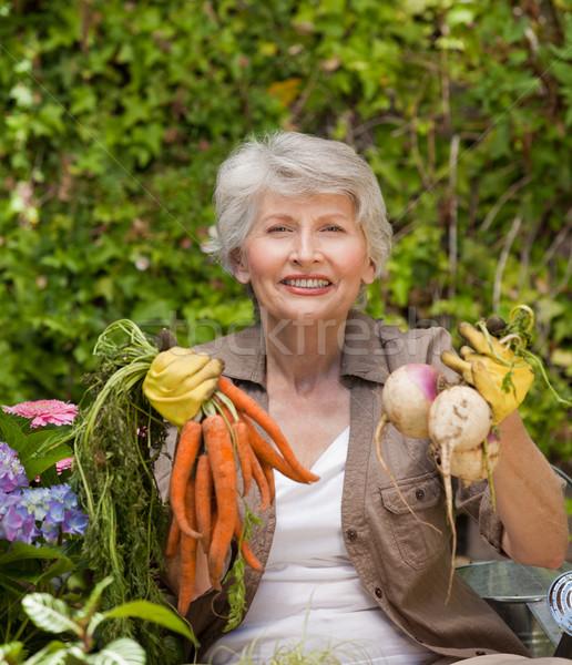 Nyugdíjas nő dolgozik kert haj otthon Stock fotó © wavebreak_media