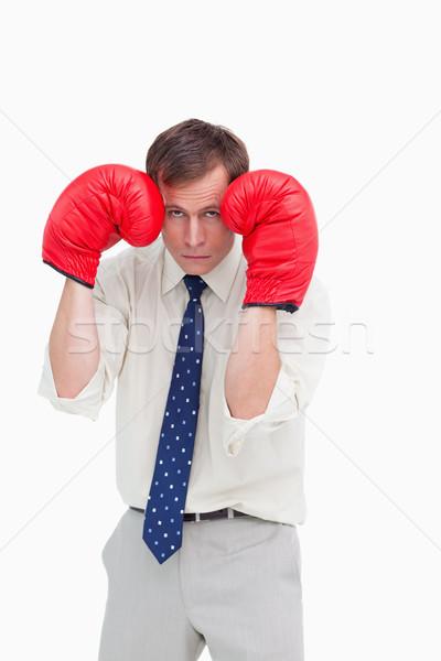 Imprenditore guantoni da boxe coprire bianco business Foto d'archivio © wavebreak_media