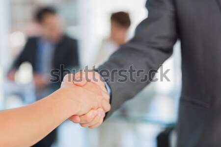 Handshake to seal a deal after a meeting Stock photo © wavebreak_media