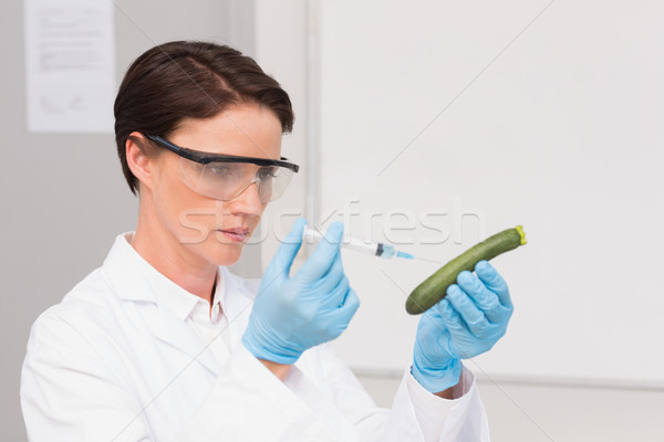 Scientist working attentively with courgette Stock photo © wavebreak_media