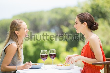 Casal copos de vinho restaurante mulher feliz Foto stock © wavebreak_media