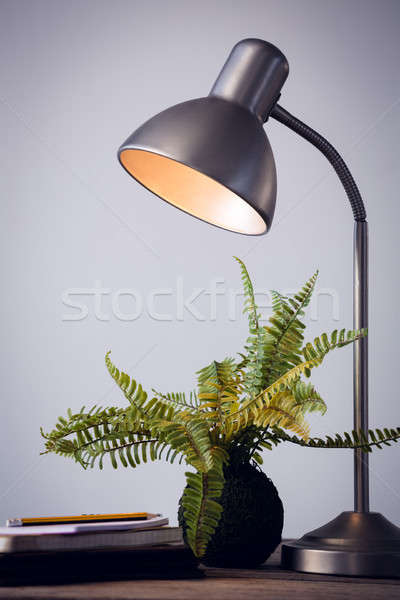 Close up of illuminated lamp by houseplant on table against wall Stock photo © wavebreak_media