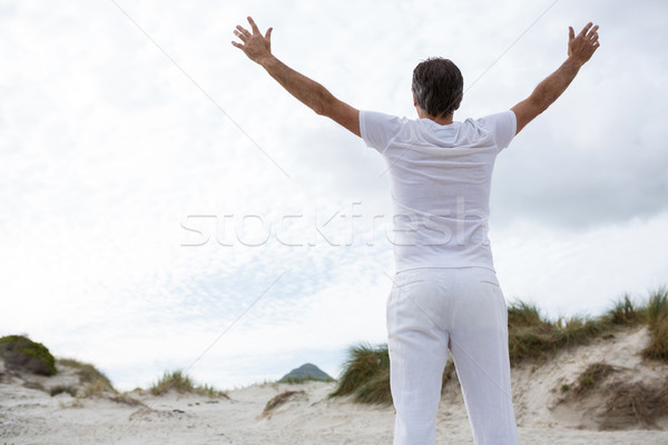 Rear view of man standing with arms outstretched on beach Stock photo © wavebreak_media
