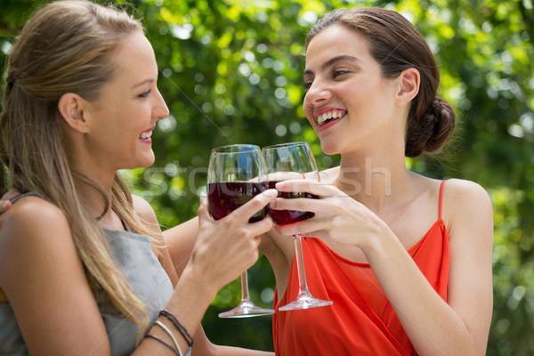 Glimlachend vrouwelijke vrienden rode wijn bril Stockfoto © wavebreak_media