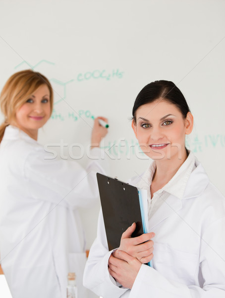 Young scientist writting a formula helped by her dark-haired assistant in a lab Stock photo © wavebreak_media