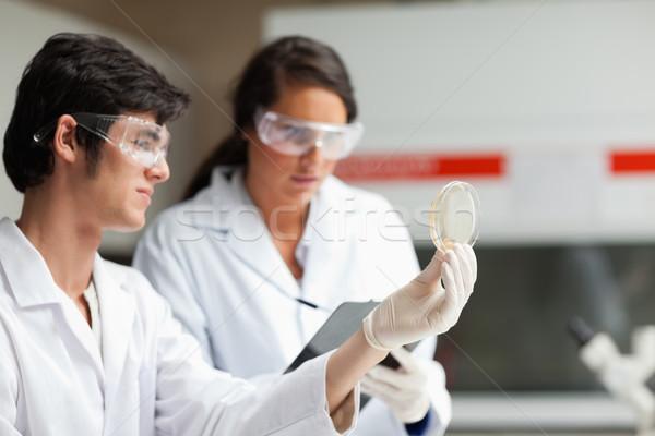 науки студентов глядя блюдо лаборатория бумаги Сток-фото © wavebreak_media
