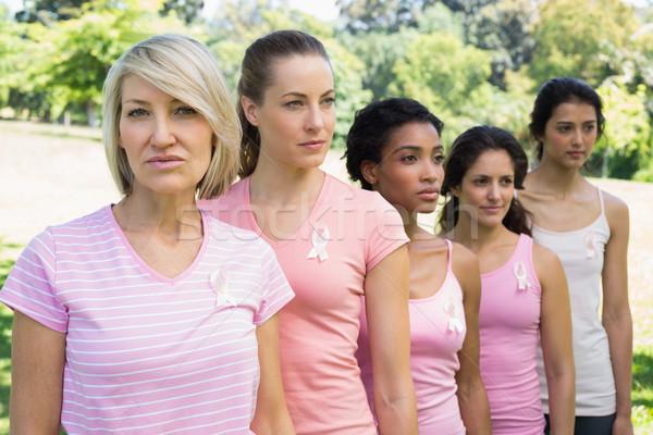 önkéntesek mellrák tudatosság portré női park Stock fotó © wavebreak_media