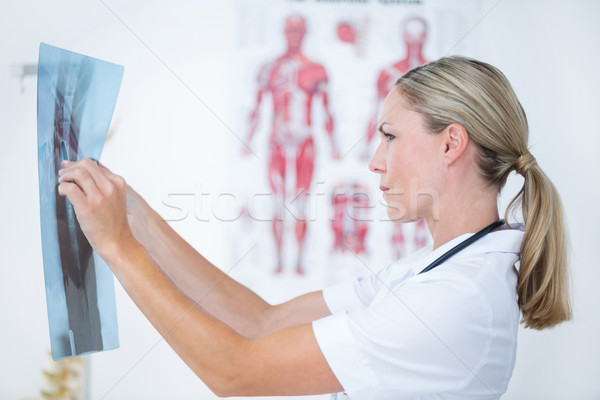 Yoğunlaşmak doktor bakıyor tıbbi ofis kadın Stok fotoğraf © wavebreak_media