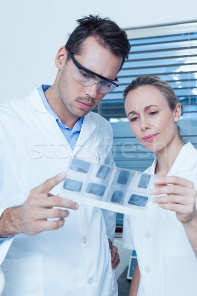 Dentisti guardando Xray due concentrato donna Foto d'archivio © wavebreak_media
