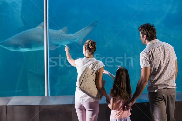 Boldog család néz cápa akvárium szeretet férfi Stock fotó © wavebreak_media