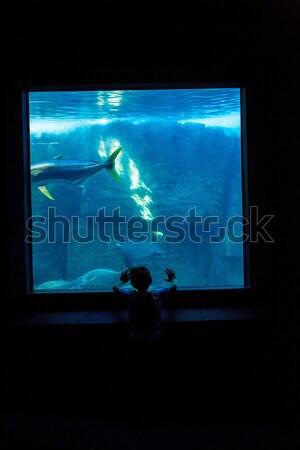 Mutlu anne kız bakıyor tank akvaryum Stok fotoğraf © wavebreak_media
