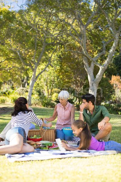 Foto d'archivio: Famiglia · felice · picnic · parco · donna · ragazza