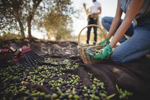 Femme olives ferme homme Photo stock © wavebreak_media