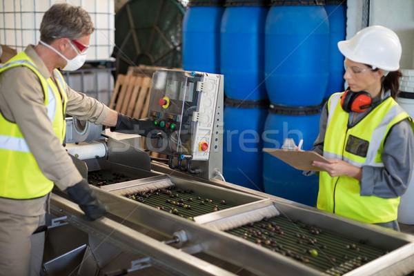 Machine olives usine affaires homme technologie Photo stock © wavebreak_media