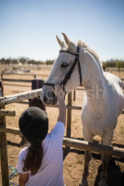 Girl touching white horse in the ranch Stock photo © wavebreak_media