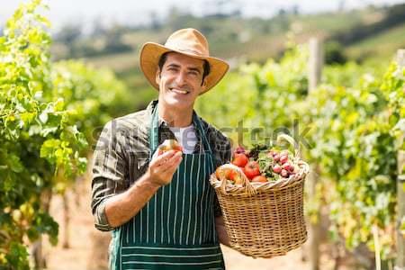Сток-фото: портрет · счастливым · женщину · корзины · свежие · овощи