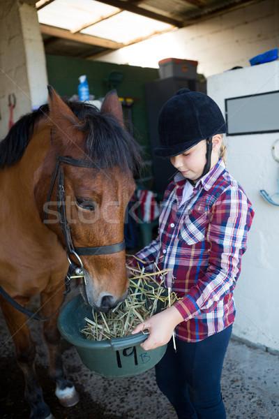 Girl feeding the horse in the stable Stock photo © wavebreak_media