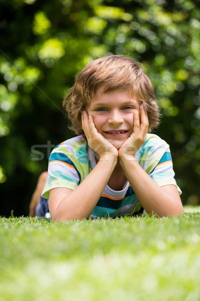 Peu garçon couché jardin fleurs herbe Photo stock © wavebreak_media
