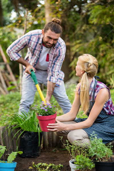 Happy gardeners planting potted plants at garden Stock photo © wavebreak_media