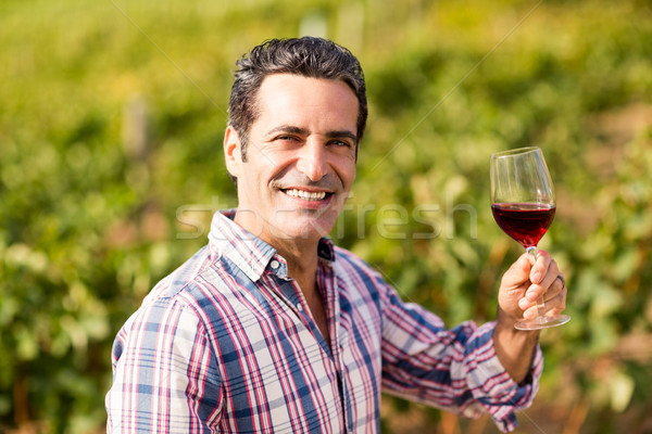 Portrait of smiling male vintner holding a glass of wine Stock photo © wavebreak_media