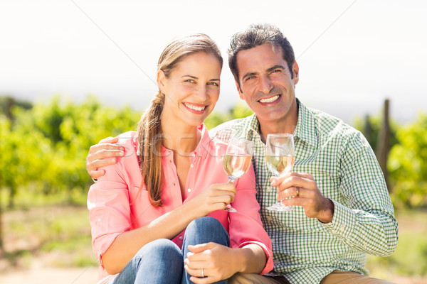 Foto stock: Retrato · feliz · casal · óculos · vinho