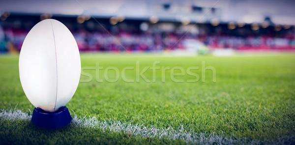 Imagem grama Foto stock © wavebreak_media