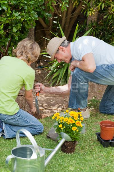 Nagyapa unoka dolgozik kert lány mosoly Stock fotó © wavebreak_media