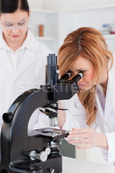 小さな 科学 見える 顕微鏡 アシスタント ラボ ストックフォト © wavebreak_media