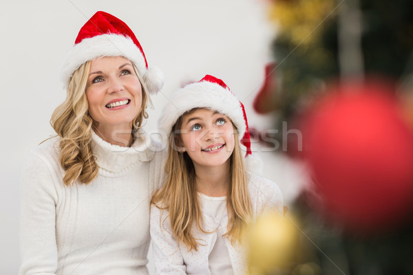 Feestelijk moeder dochter glimlachend boom home Stockfoto © wavebreak_media