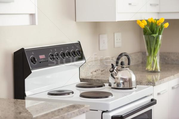 чайник кухне печи домой цветок Сток-фото © wavebreak_media