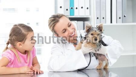 Veterinario examinar gato propietario médicos oficina Foto stock © wavebreak_media