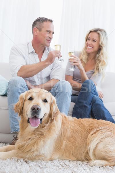 Cuplu potabilă şampanie câine acasă camera de zi Imagine de stoc © wavebreak_media