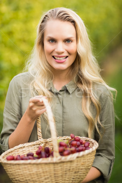 Blonde winegrower holding a red grape basket  Stock photo © wavebreak_media