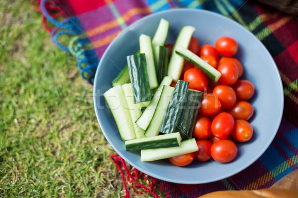 Groenten kom picknickdeken voedsel Stockfoto © wavebreak_media