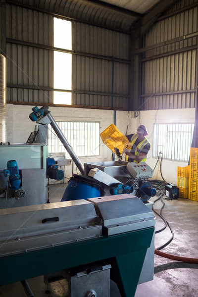 Trabajador de oliva máquina fábrica negocios hombre Foto stock © wavebreak_media