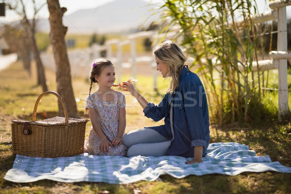 Mother feeding food to her daughter on picnic  Stock photo © wavebreak_media