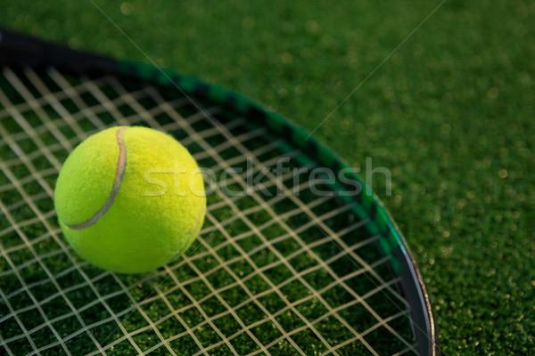 Közelkép teniszlabda ütő mező üzlet fű Stock fotó © wavebreak_media