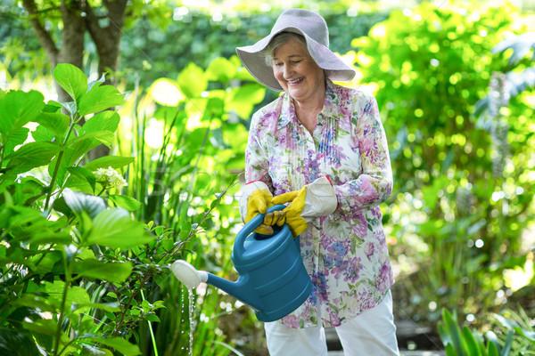 幸せ シニア 女性 水まき 植物 庭園 ストックフォト © wavebreak_media