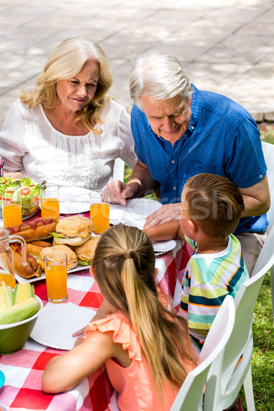 Grand chidren with grandparents having lunch at lawn Stock photo © wavebreak_media
