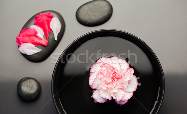 White and pink carnation floating on a bowl withblack stones around it and petals on one of the ston Stock photo © wavebreak_media