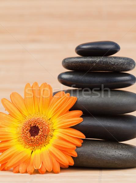Zdjęcia stock: Pomarańczowy · słonecznika · czarny · kamienie · tle