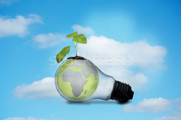 Light bulb with plant and earth Stock photo © wavebreak_media