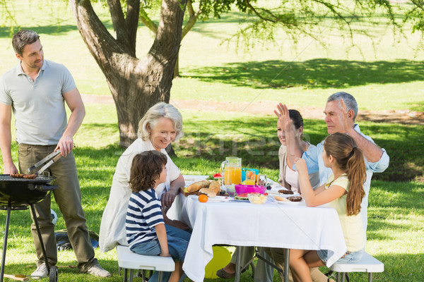 Padre barbecue famiglia pranzo parco famiglia allargata Foto d'archivio © wavebreak_media